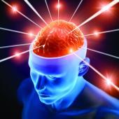 Saladmaster Sponsors Dr. Neal Barnard's Protect Your Memory Program