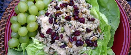 Saladmaster 316Ti Recipe Chicken, Rice and Cranberry Salad