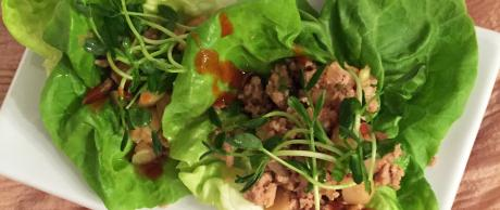Saladmaster Recipe Asian Inspired Lettuce Wraps