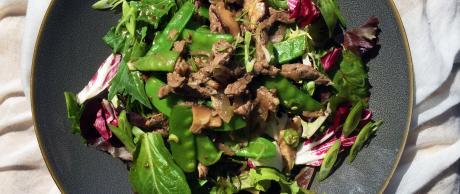 Saladmaster Recipe Shitake Beef & Snow Pea Salad Bowl