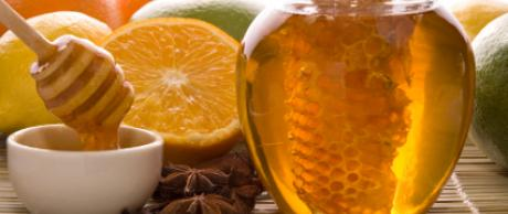 Saladmaster Recipe Fresh Lemon and Honey Dressing